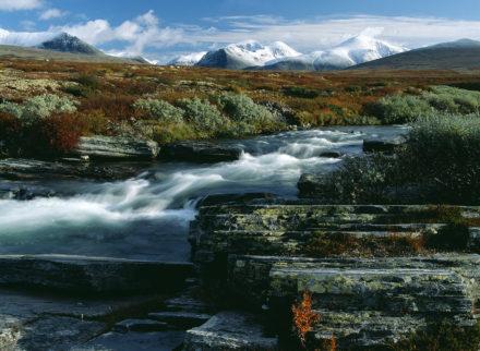 Höst vid Rondene fjäll,Norge